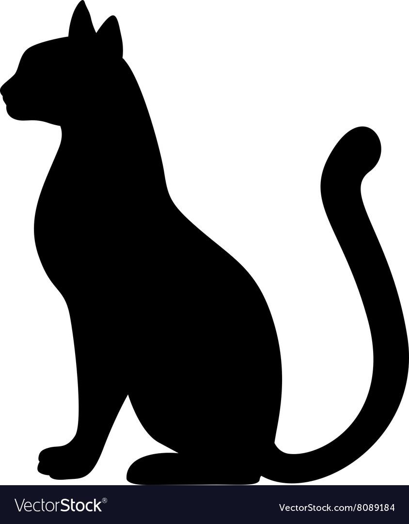 Cat silh