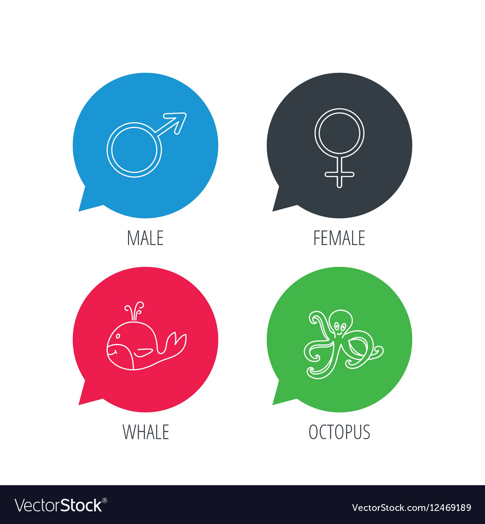 Male female and octopus icons