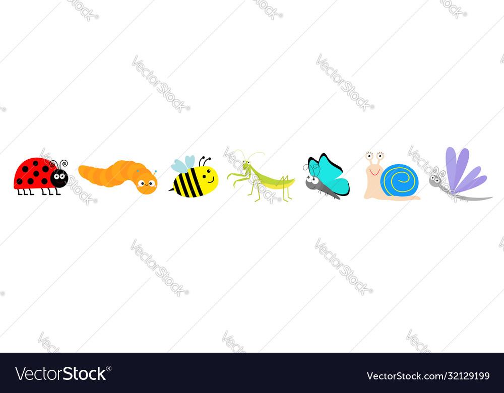 Cute cartoon insect set line mantis ladybug