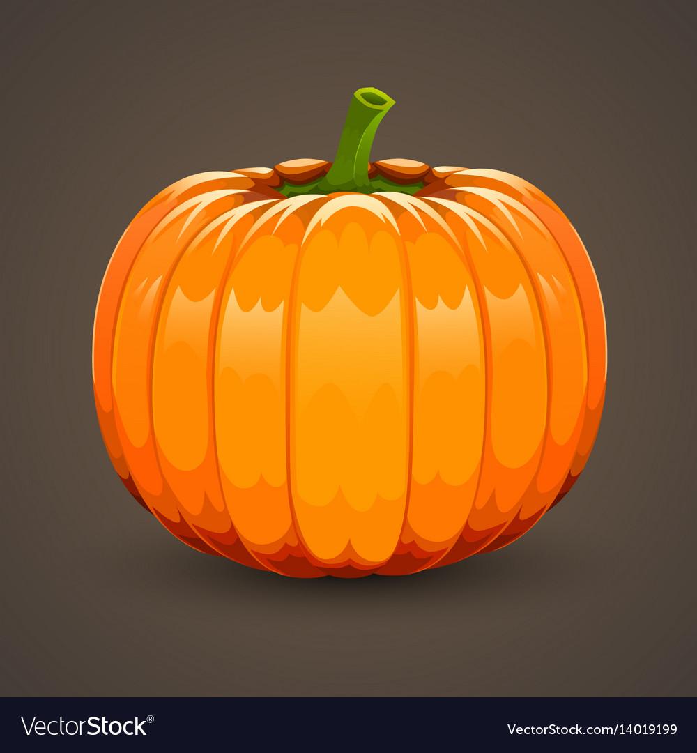 Pumpkin on dark background vector image