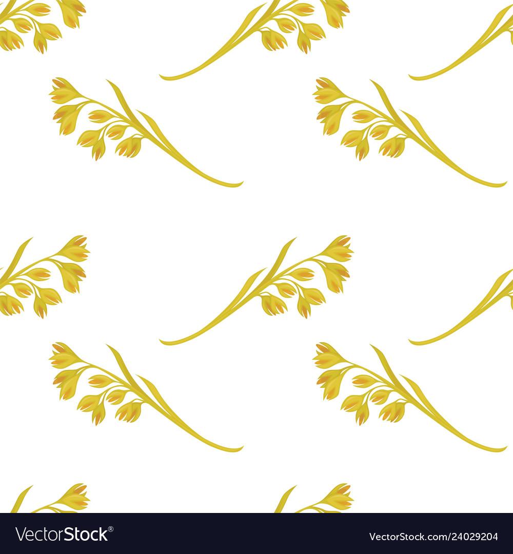 Oat ears of grain seamless pattern on white