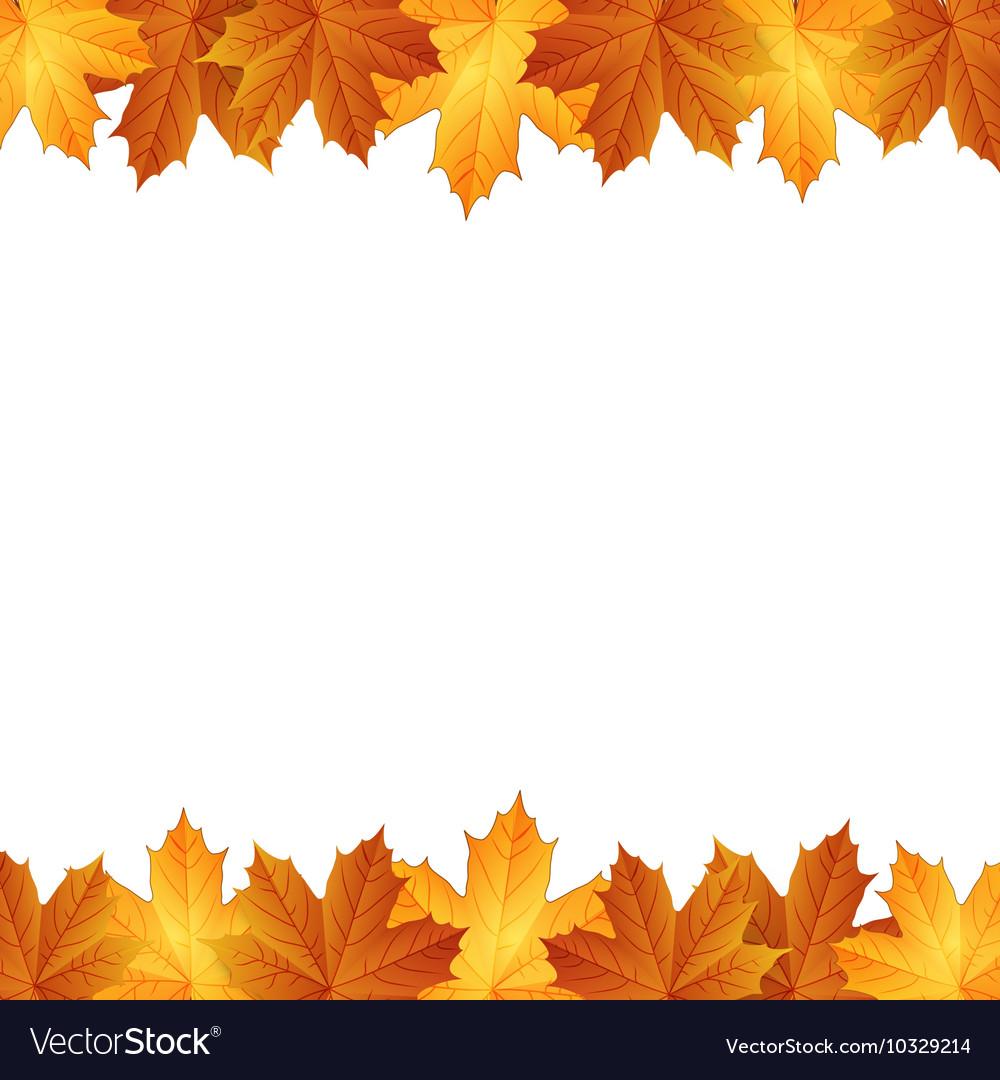 Border of autumn maples leaves