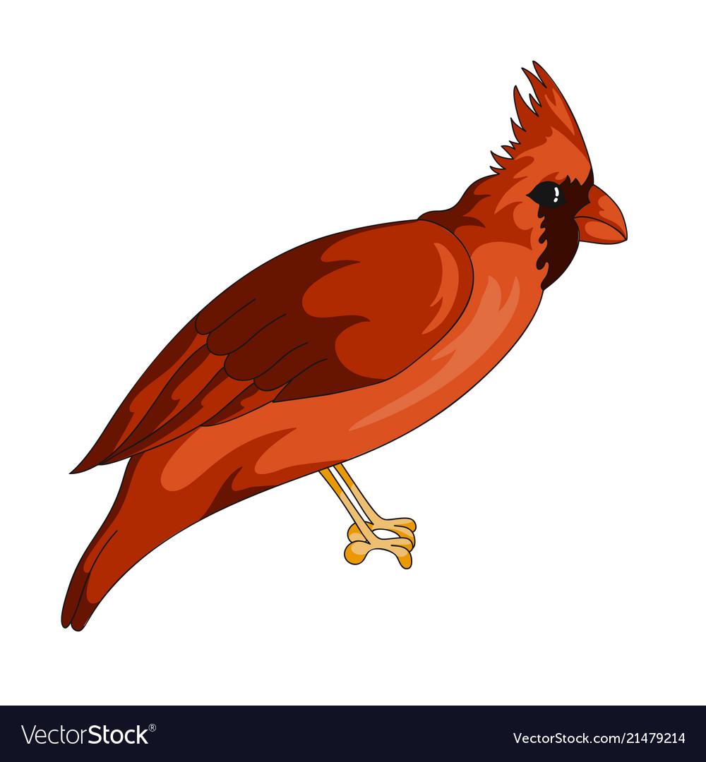 Red cardinal exotic bird icon