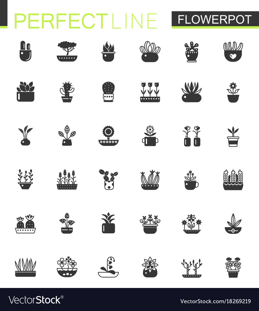 Black classic house plants and flowers in vector image
