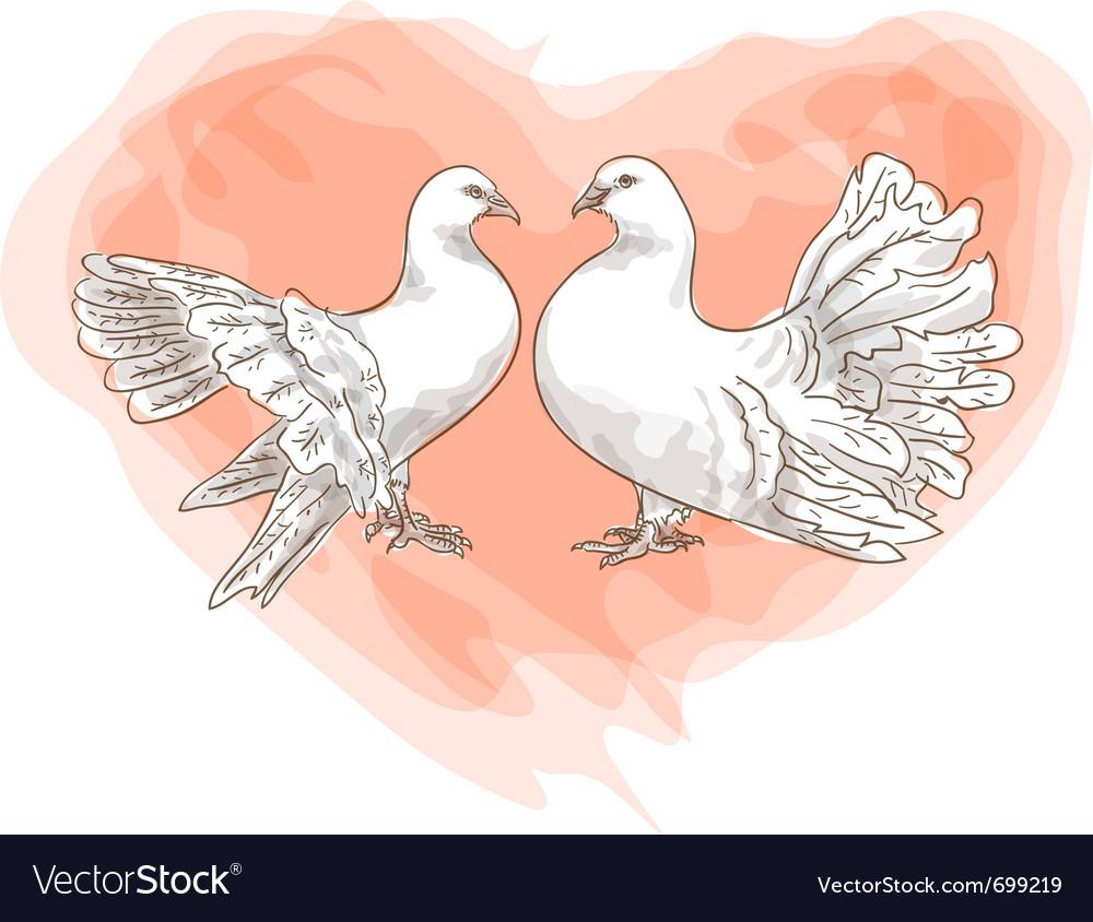 Couple doves
