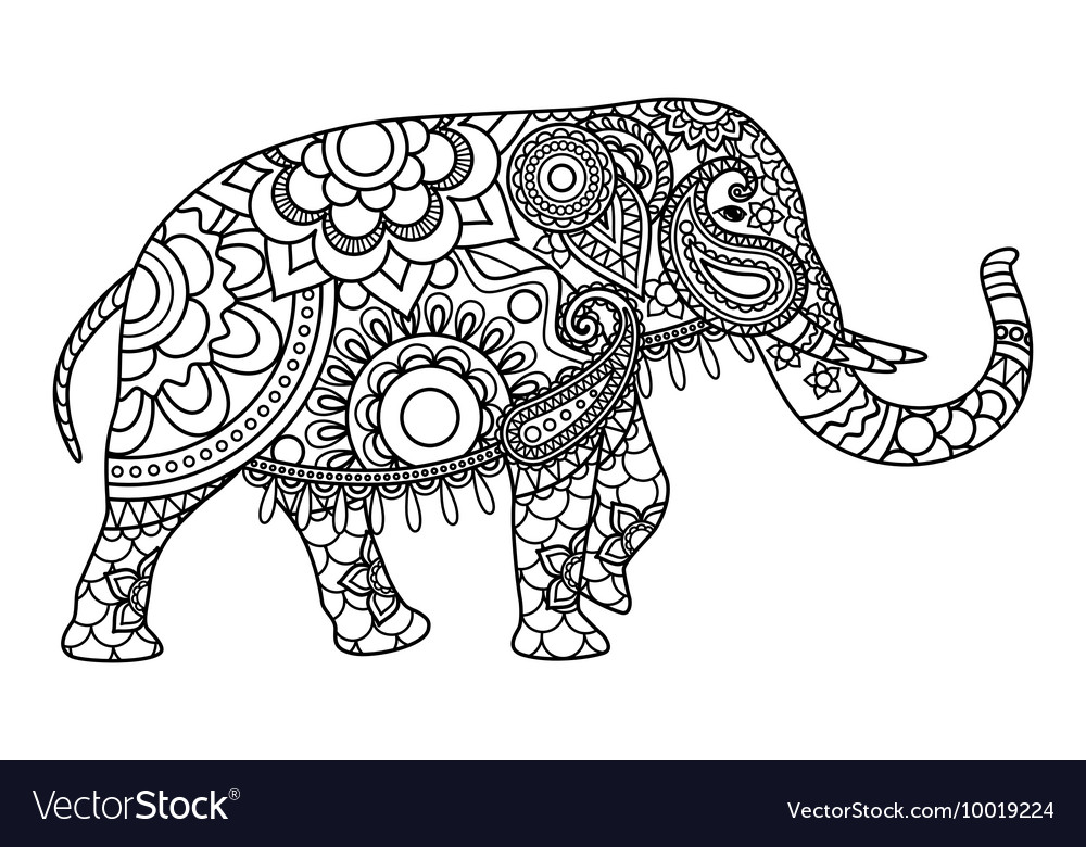Indian elephant coloring pages template vector image