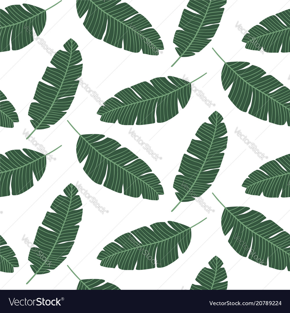 Seamless pattern with banana leaves tropical