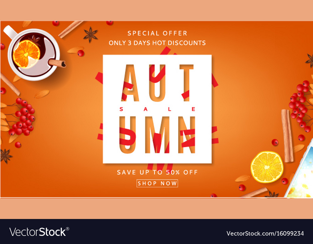 Orange beautiful web banner for autumn sale vector image