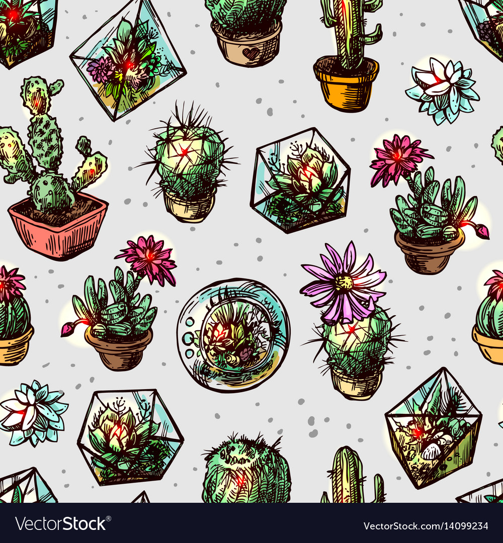 Seamless pattern with succulents and cactus