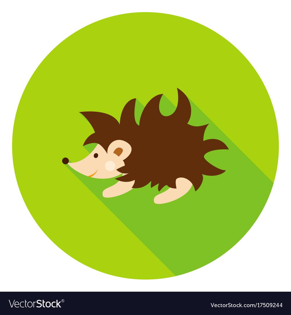 Hedgehog circle icon