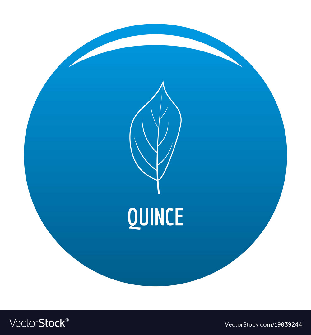 Quince leaf icon blue