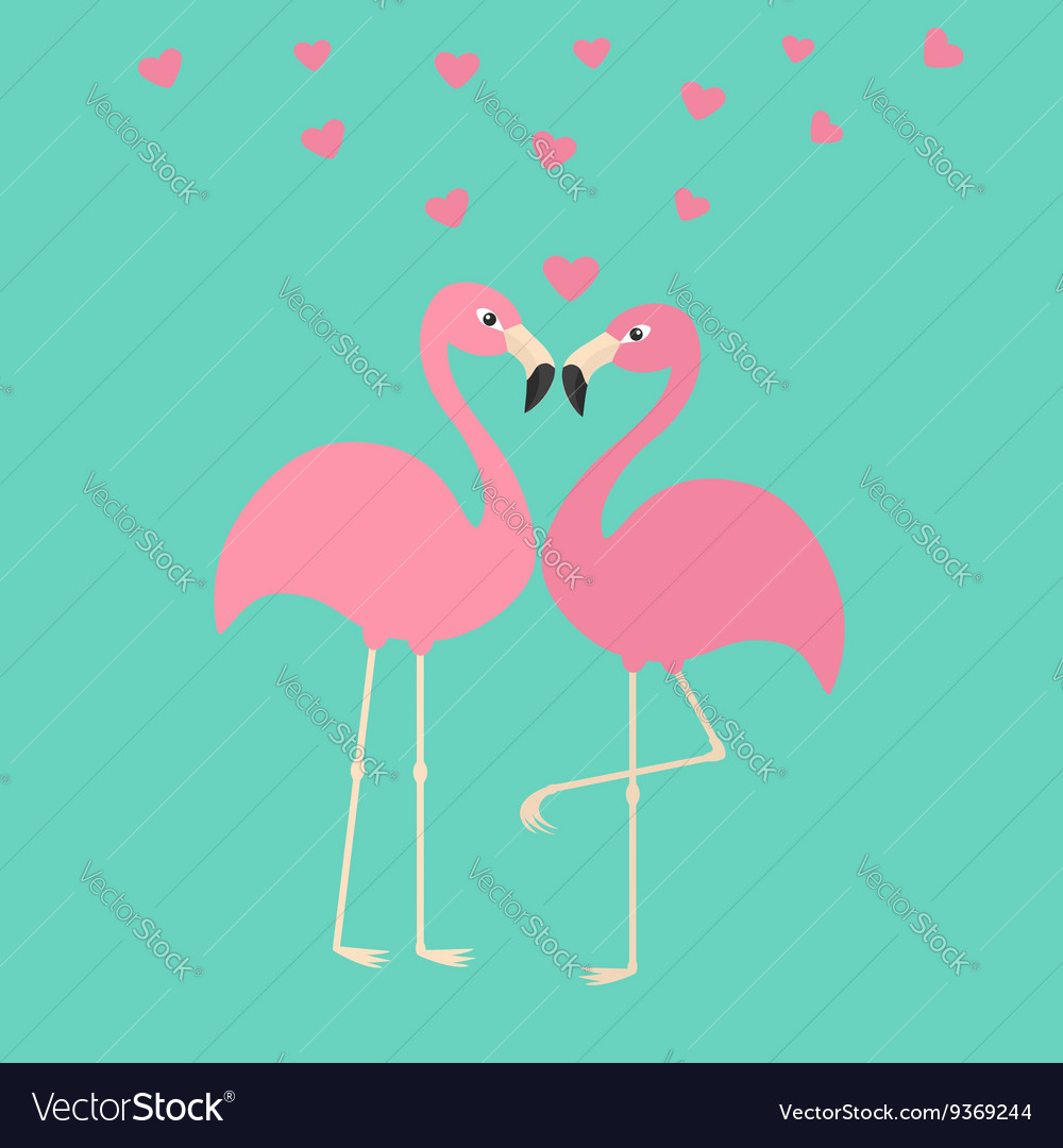 Two pink flamingo couple in love Hearts Exotic vector image