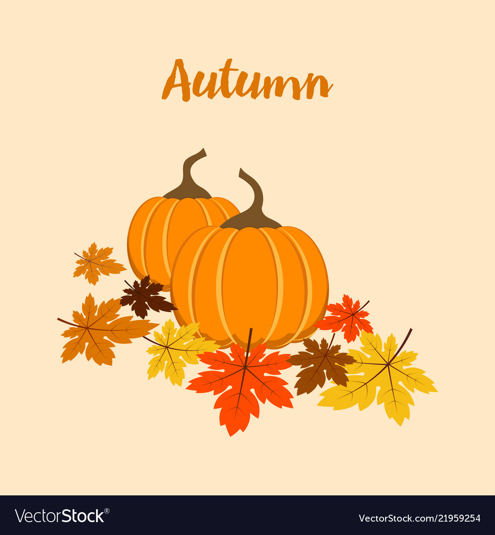 Autumn composition with pumpkins vector