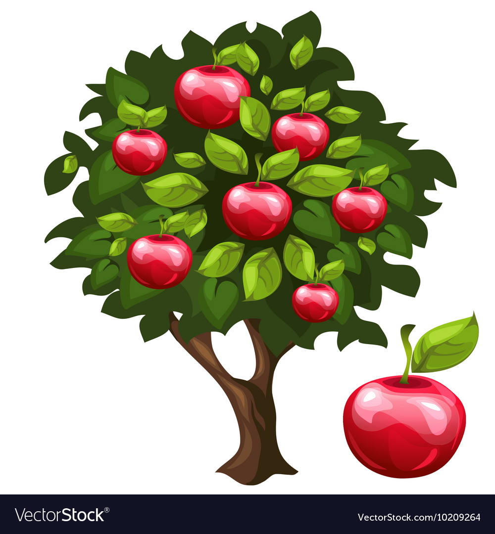 Apple tree with ripe fruits in cartoon style