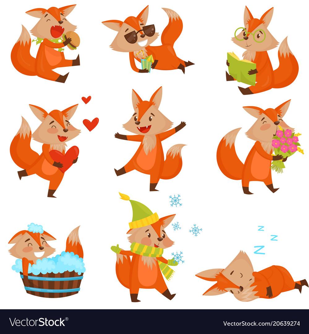 Cute cartoon fox character set funny animals in