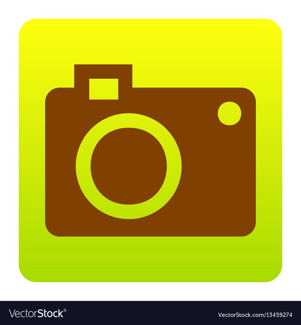 Digital camera sign brown icon at green