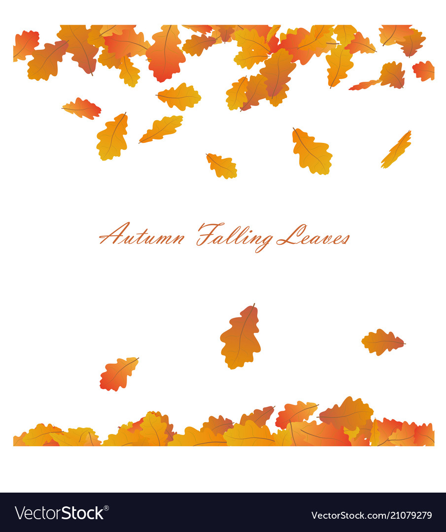 Autumn frame with falling maple leaves on w