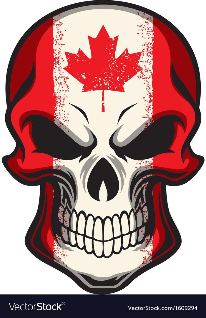 canada flag painted on skull royalty free vector image