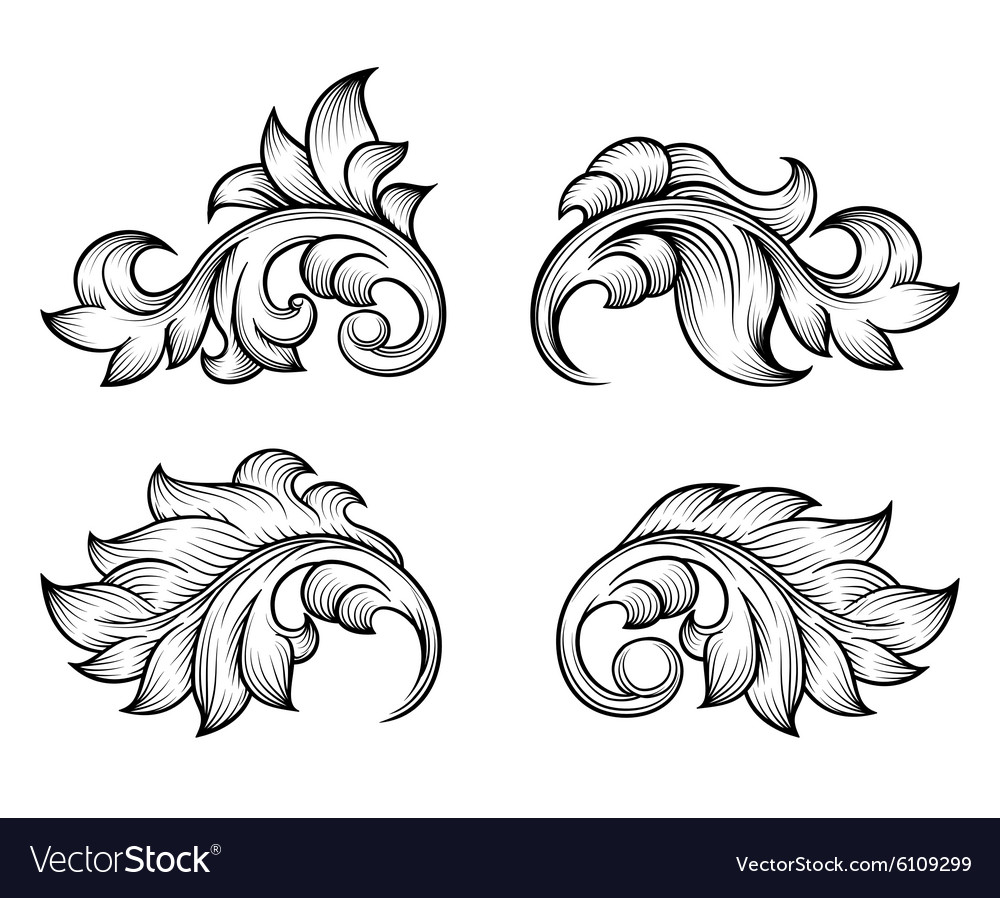 Vintage baroque scroll leaf set in engraving style vector image