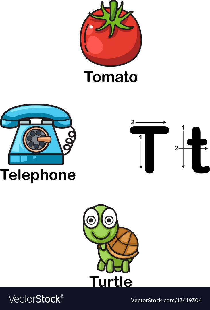 Alphabet letter t-tomato telephone turtle