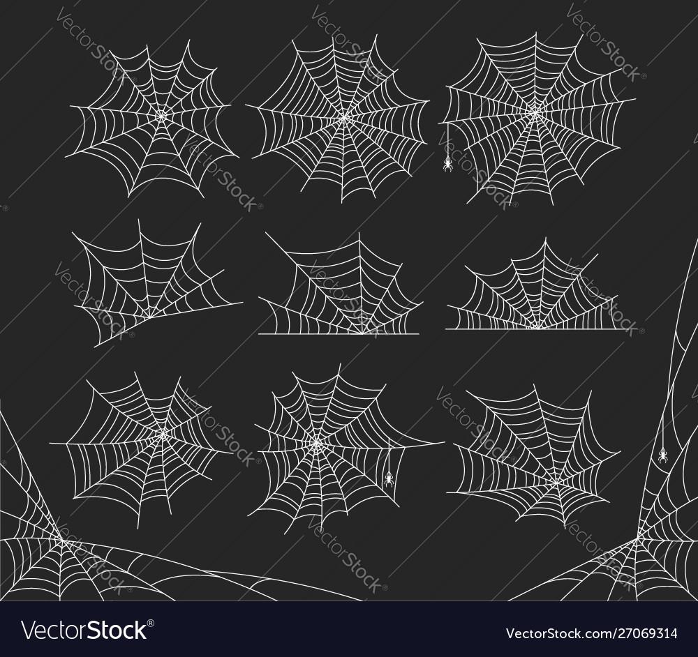 Halloween spider web cobweb