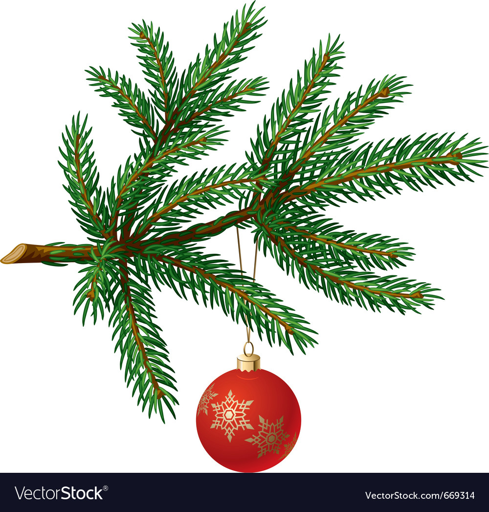 Pine tree branch with christmas ball vector image