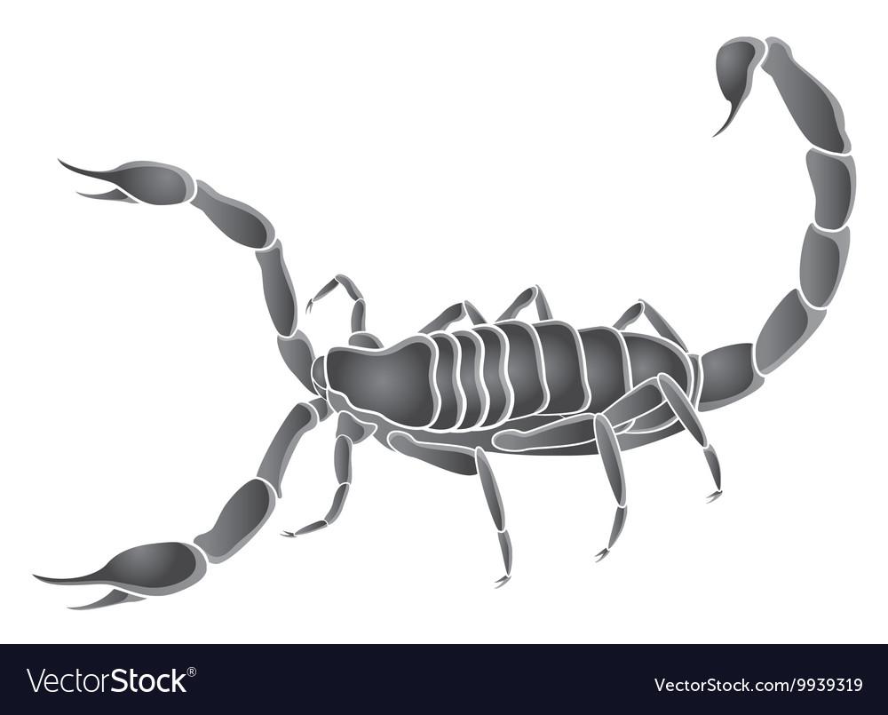 Scorpio zodiac sign in starry sky Contour icon