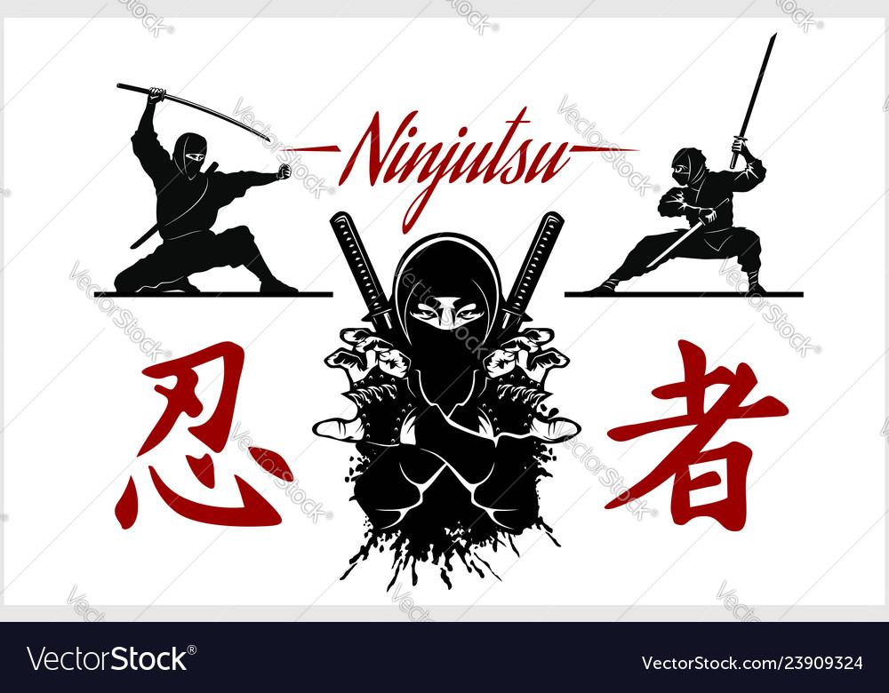 Ninja warrior silhouette of