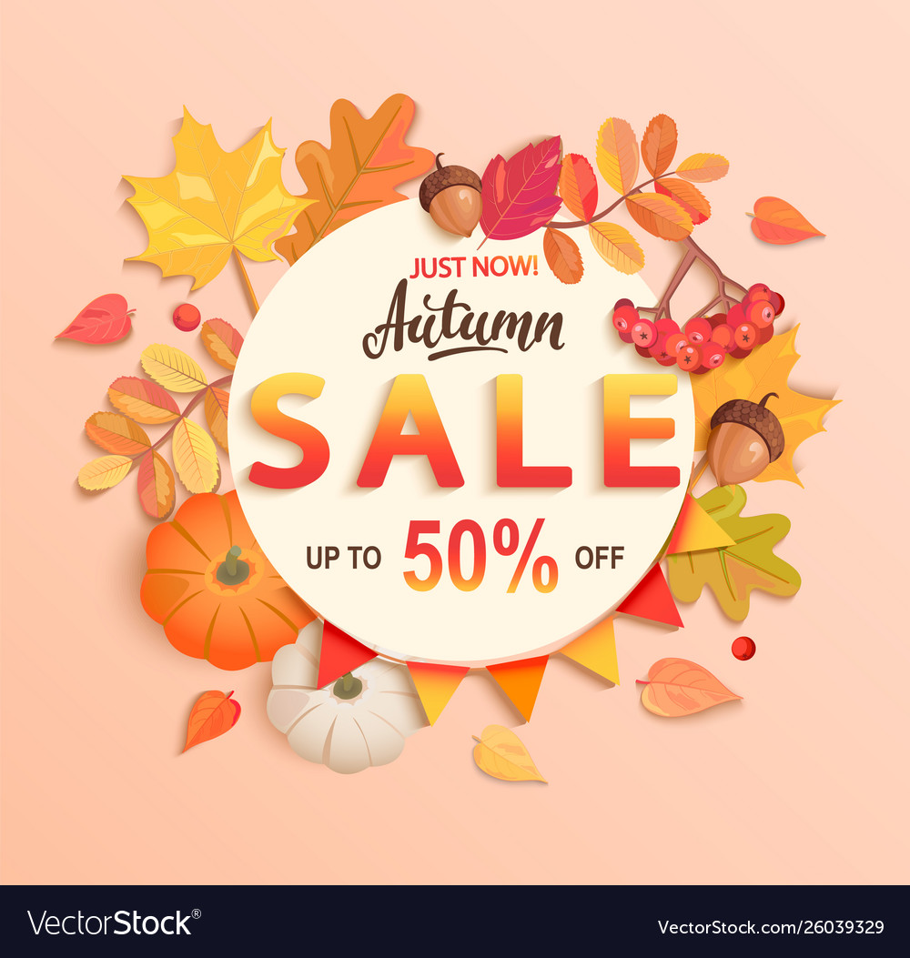 Autumn sale banner up to 50 percent off vector