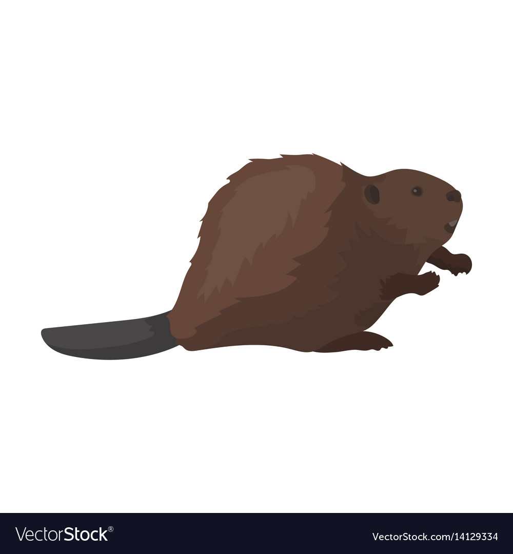 Canadian beaver canada single icon in cartoon