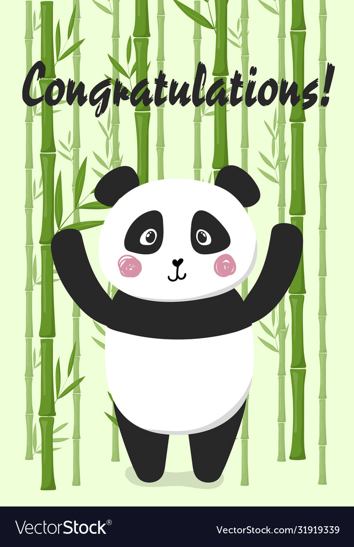Congratulations card with panda on bamboo back