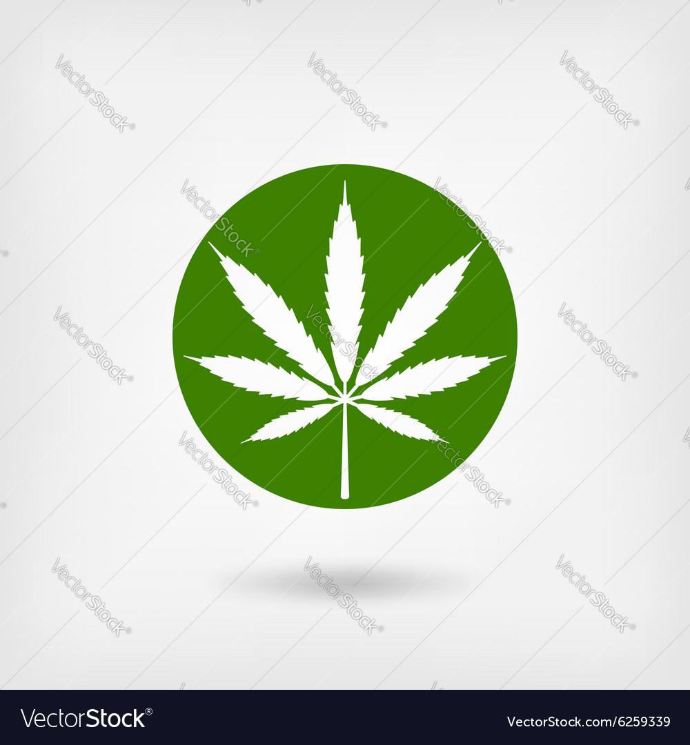 Marijuana leaf in green circle logo symbol