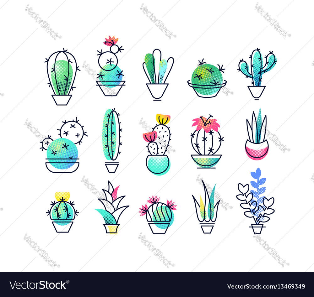 Colorful icons set of indoor plants vector image