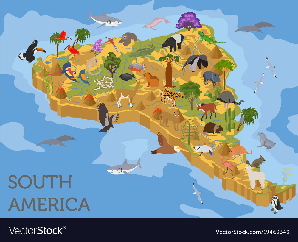 3d Map Of South America.Isometric 3d South America Flora And Fauna Map