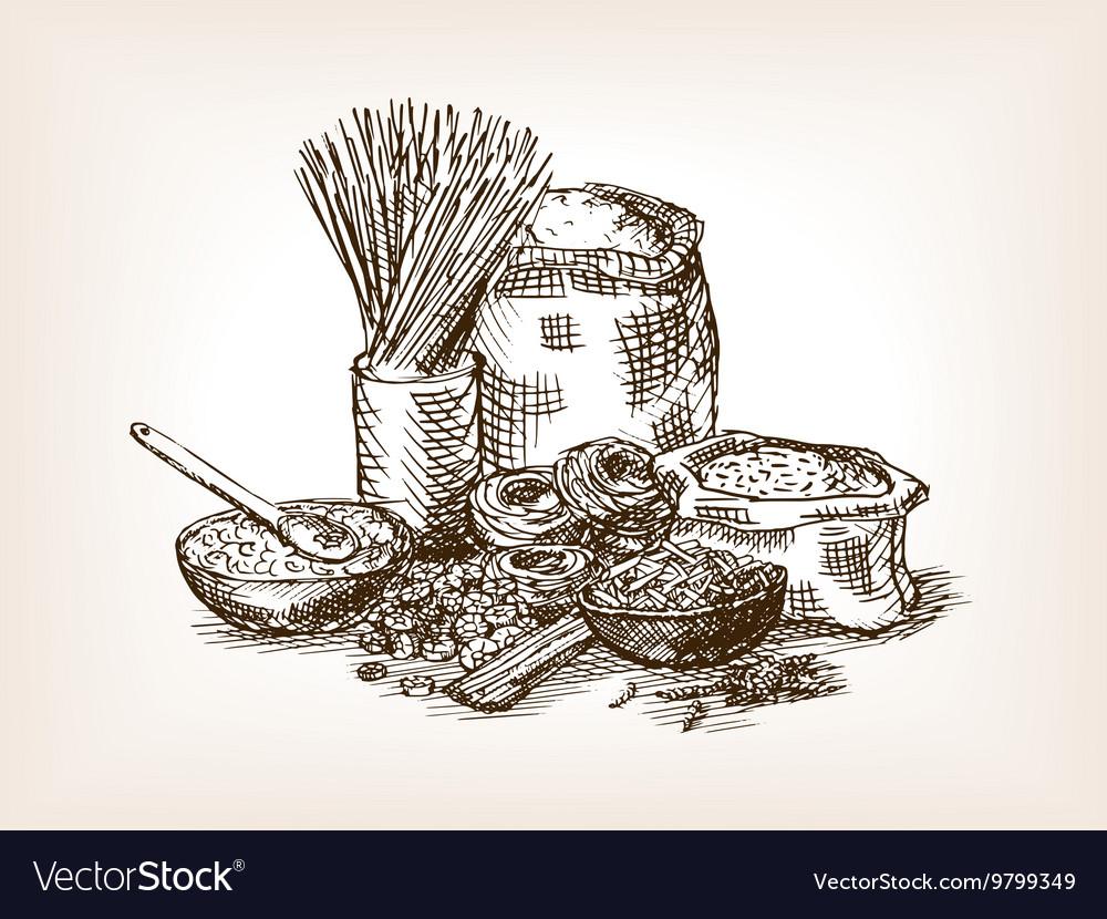 Pasta still life sketch style