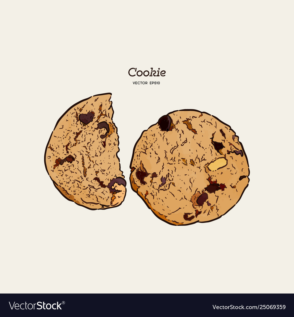 Chocolate chip cookie hand draw sketch
