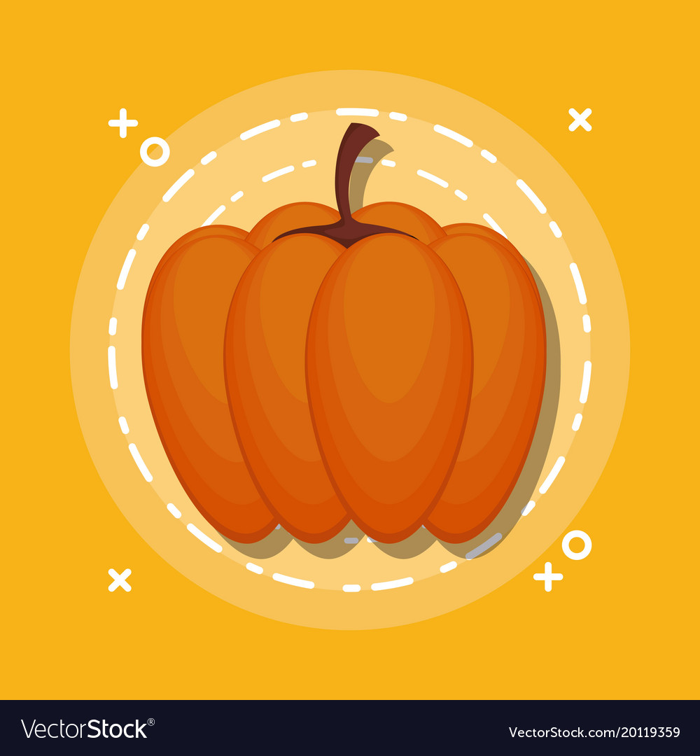 Colorful pumpkin autumn symbol