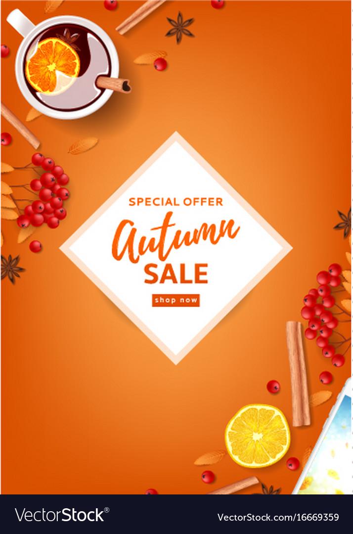 Orange flyer for autumn seasonal sale vector image