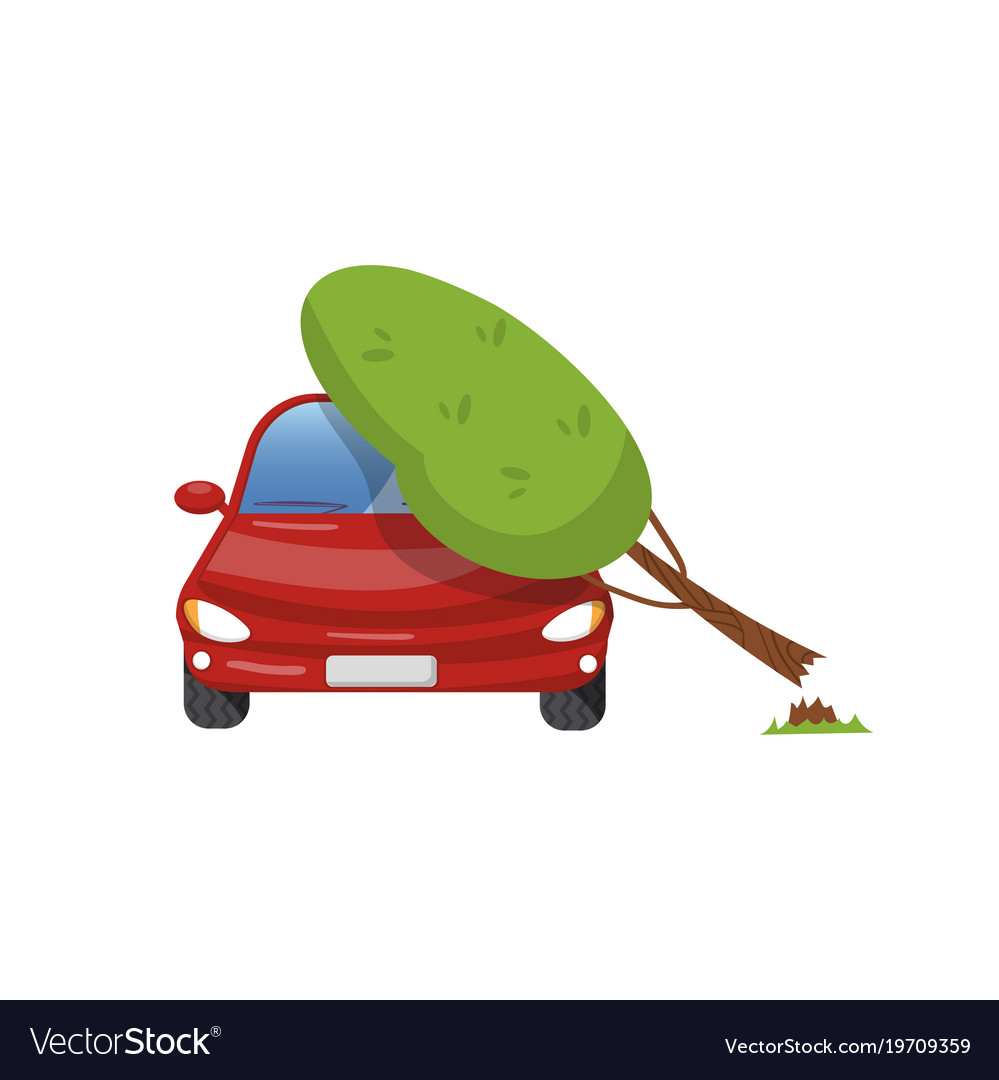 Tree falling on vehicle car insurance concept