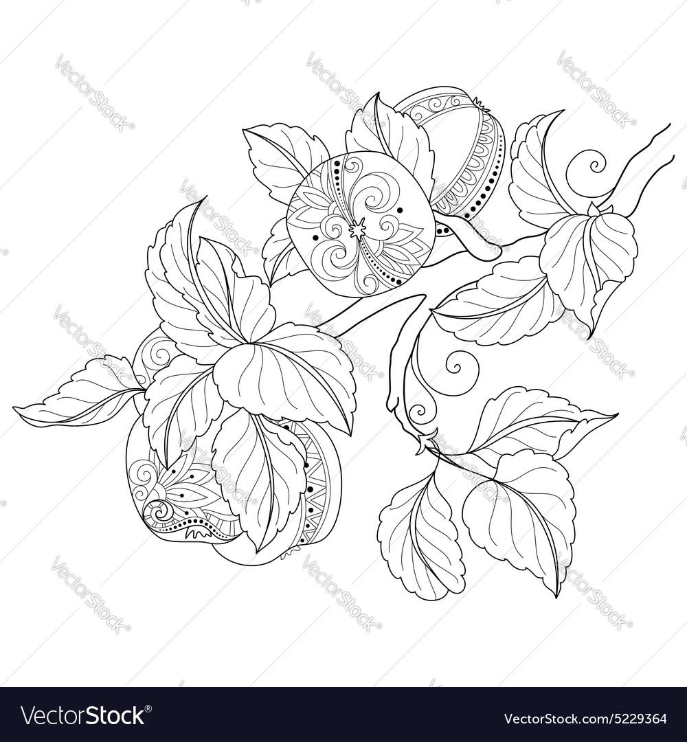 Monochrome Fruit Background vector image