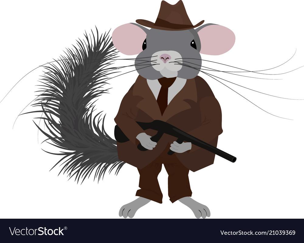 Gangster chinchillamafia chinchilla dressed in