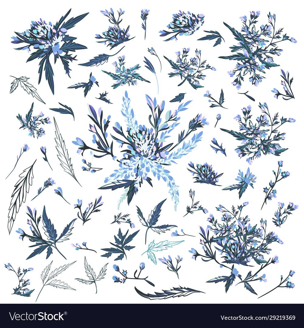 Set elegant drawn field plants and flowers