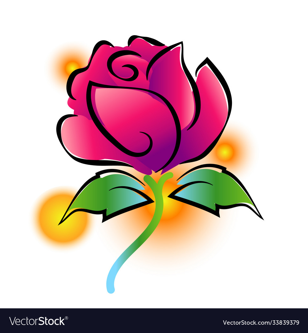 Pink rose painting on white background