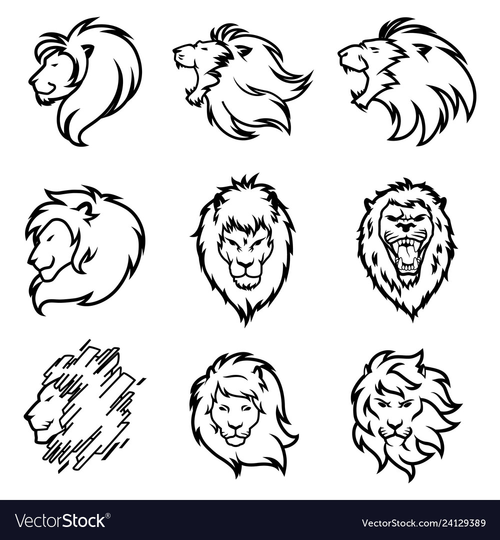 Lion logo set premium design collection