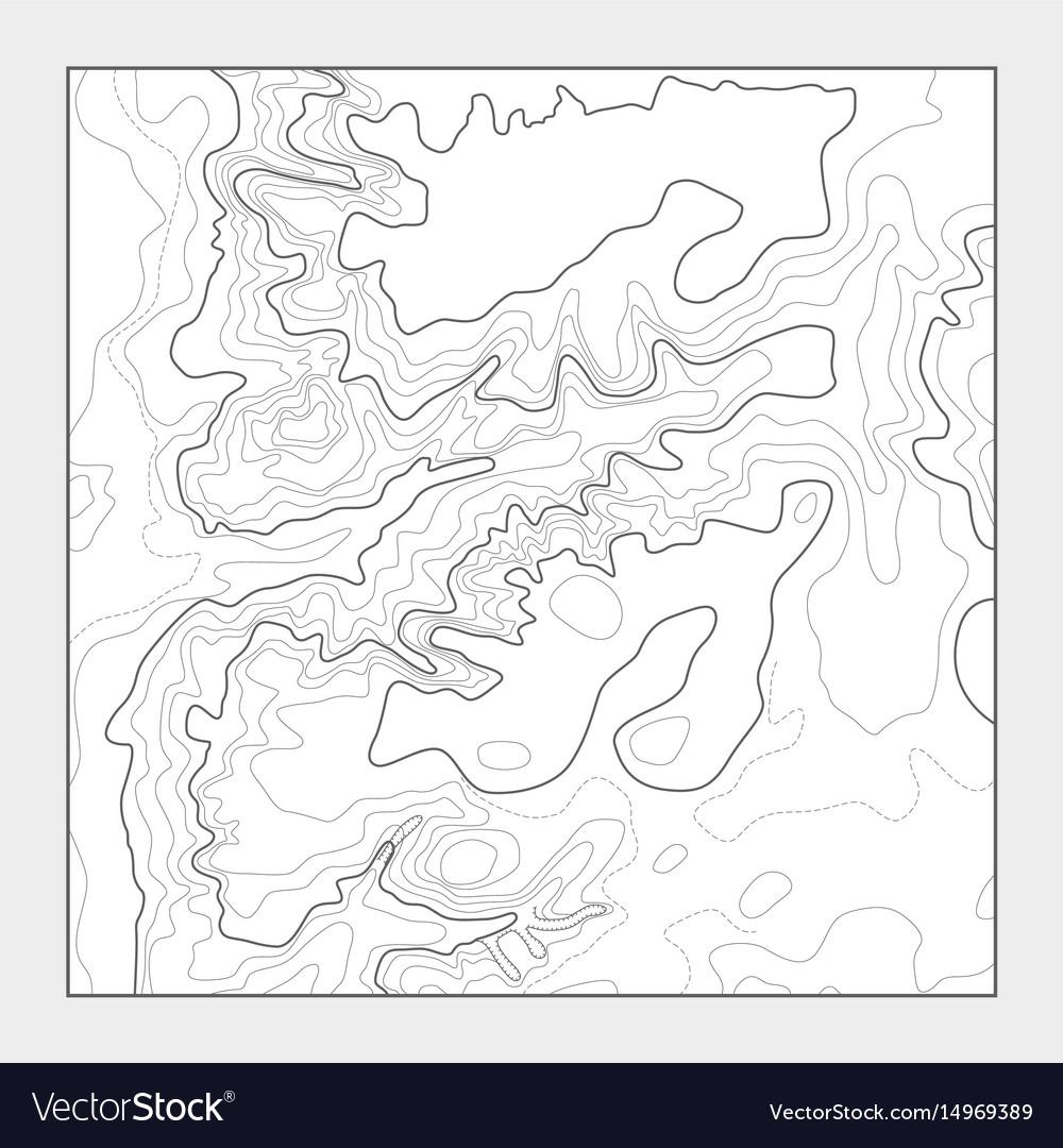 Topographic contour map background - topo vector image