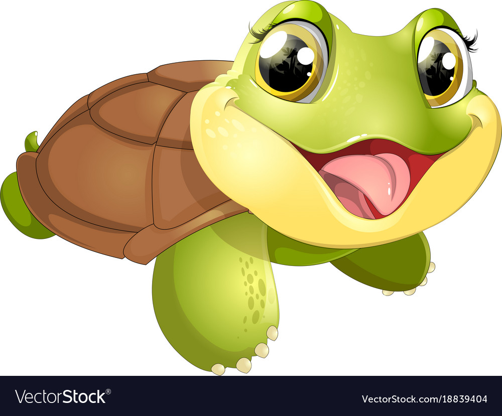 Beautiful cute turtler