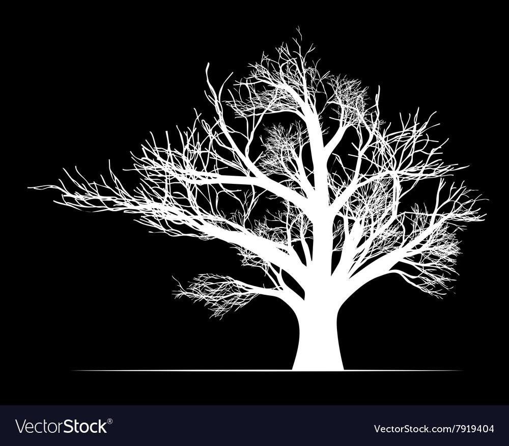 Big white tree on black background vector image
