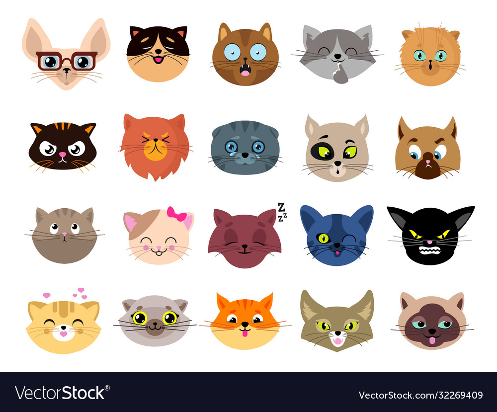 Cats avatars flat cat faces isolated kitten