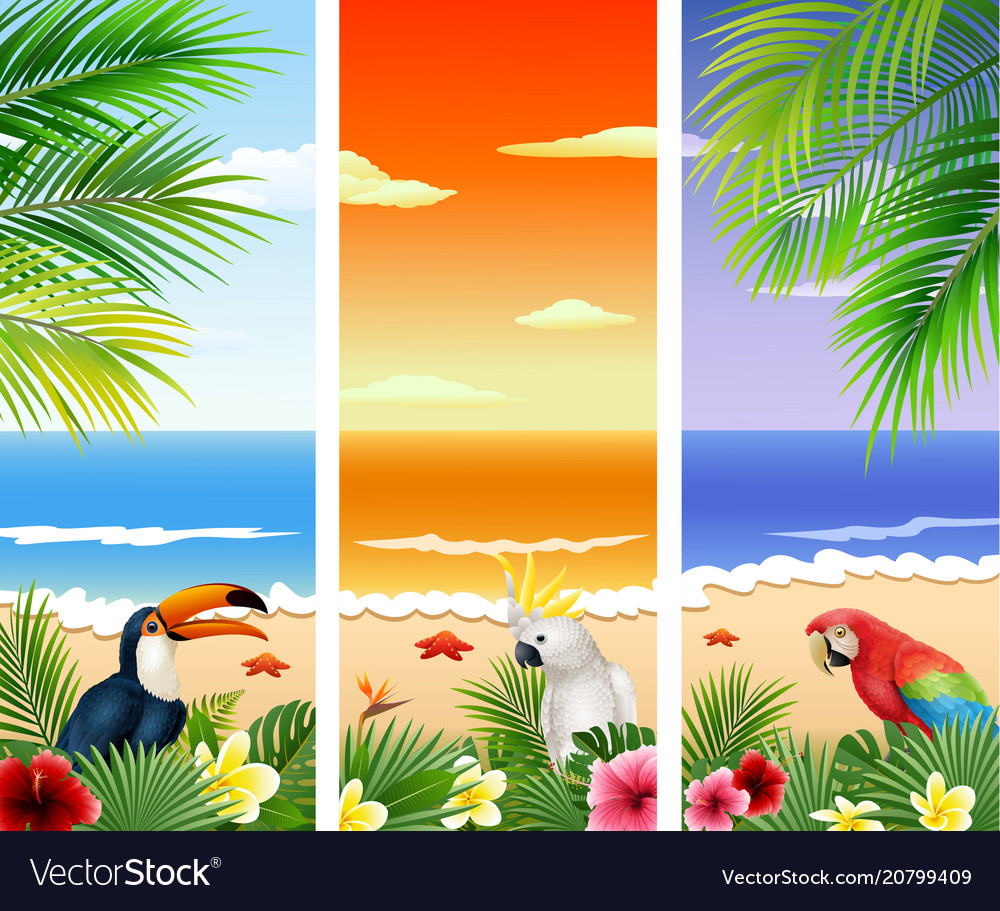 Set of three tropical beach background