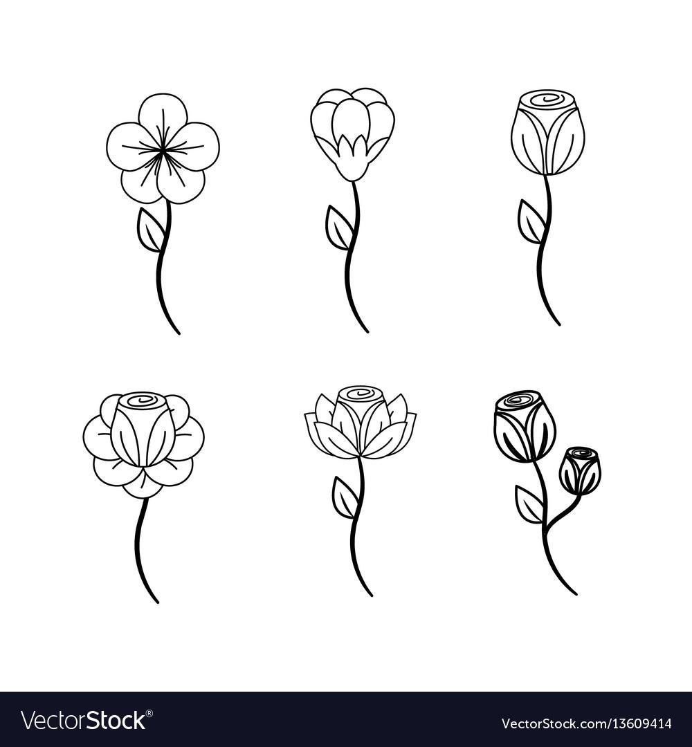 Beautiful spring flowers icon